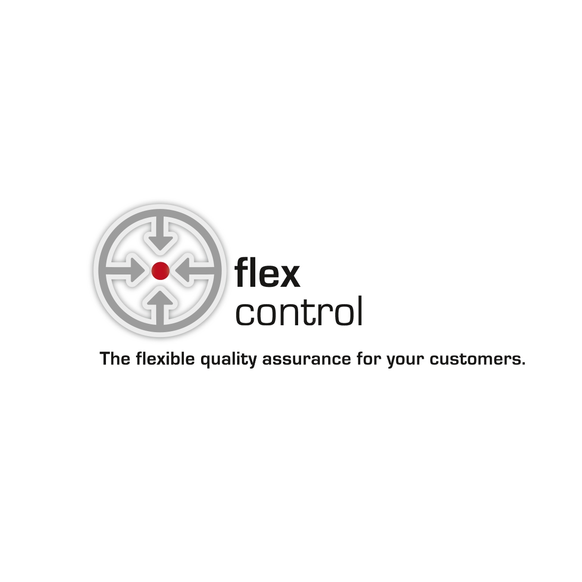Logo Flex Control